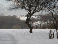 Winter_005_2